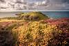 Strumble Head Lighthouse - Pembrokeshire Coast, Wales, United Kingdom