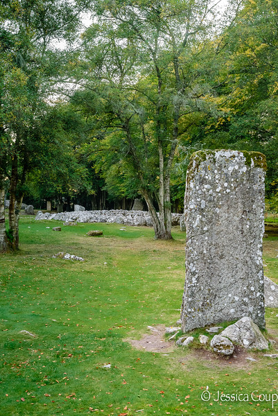Don't Touch the Standing Stone