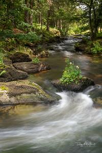 Badgworthy Water Doone  Valley
