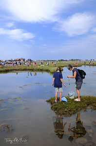 Walberswick - Crabbing