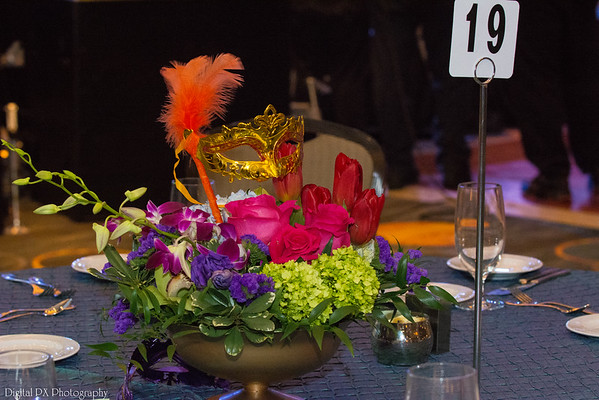 UNCF Mayor's Masked Ball Washington, DC 3/5/16