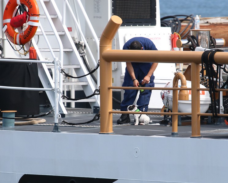 Mascot aboard the Albacore