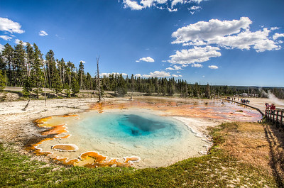 Silex Spring,Yellowstone National Park, Wyoming, USA