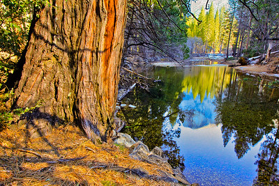 Merced River, Yosemite National Park, California, USA
