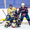 USNA Women's Hockey vs Liberty at the Brigade Sports Complex  in Annapolis, Maryland on 1/20/2017. (Photo by Michael McSweeney/USA Warriors).