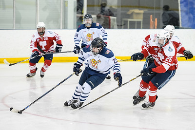 USNA Men's D2 Hockey vs Citadel at the Brigade Sports Complex in Annapolis, Maryland on 1/14/2017. (Photo by Michael McSweeney/USA Warriors).