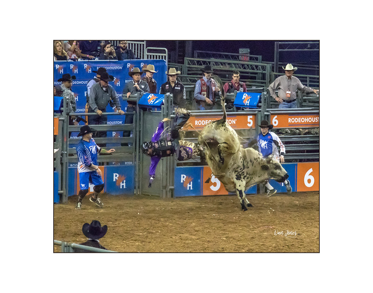 """The ultimate ouch (and kick).  Rescue was by 3 cowboy """"clowns"""" who taunted the bull while the rider got out of there.  Final score bulls 9 riders zero."""