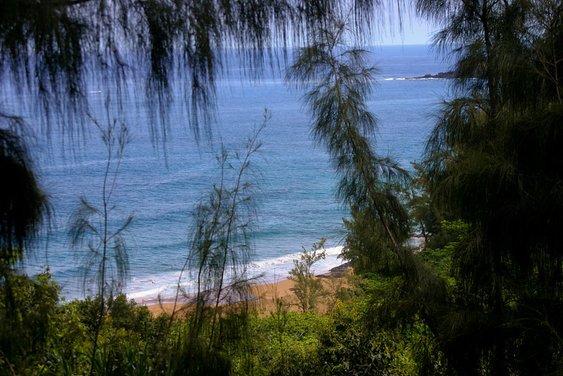 North Shore Beach