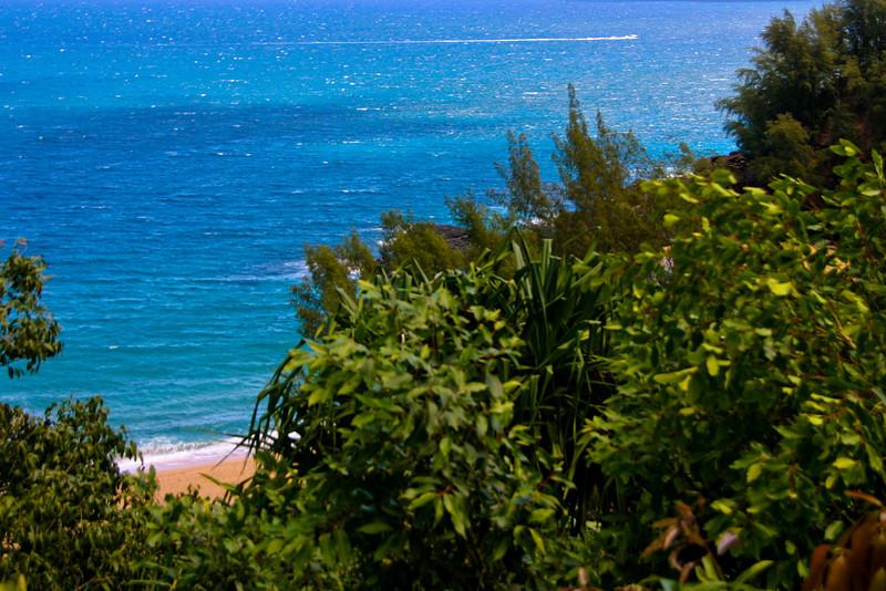 Kapa'a Coast