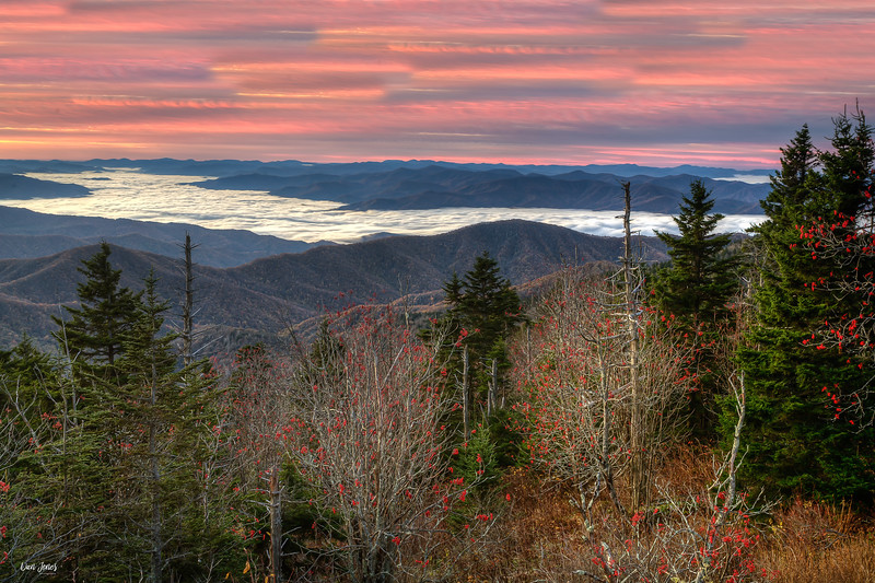 Early Morning Fog, Great Smoky Mountains National Park