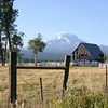 Barn, Mt. Adams