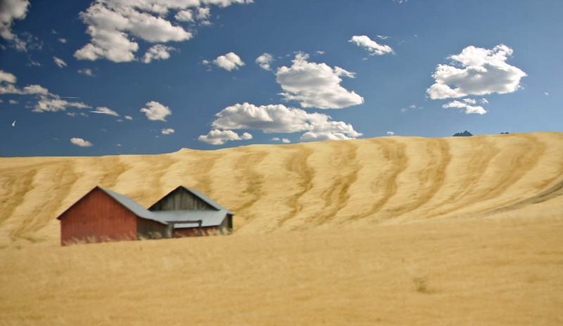 Barn, Field, Sky