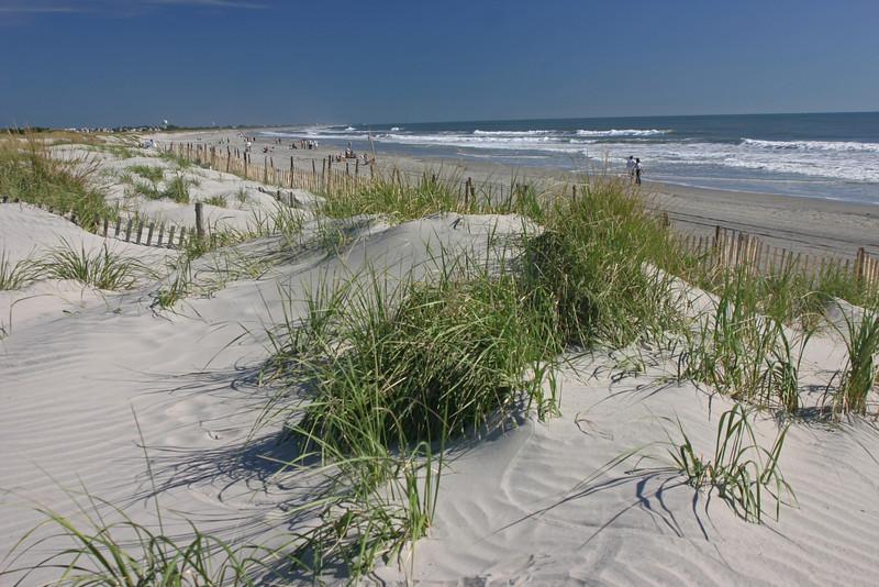 Dune, Dune Grass, Fence