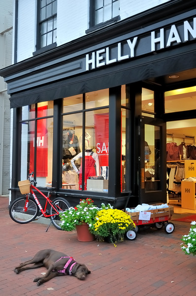 Helly Hanson - Annapolis, Maryland