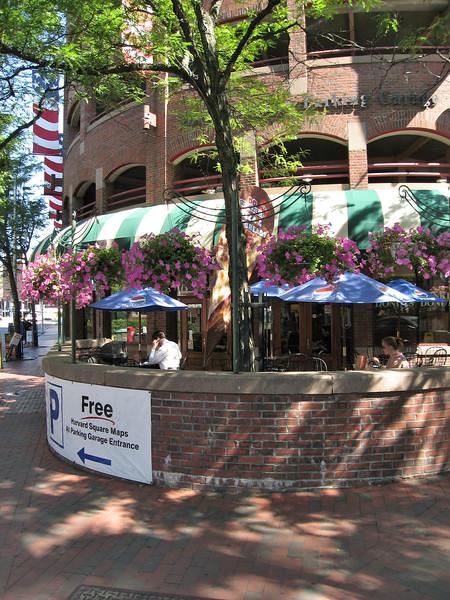 Harvard Square gentrified - Cambridge, Massachusett