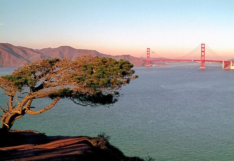 Lincoln Park   San Francisco, California