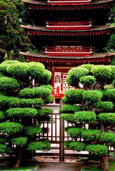 Pagoda   Golden Gate Park   San Francisco, California