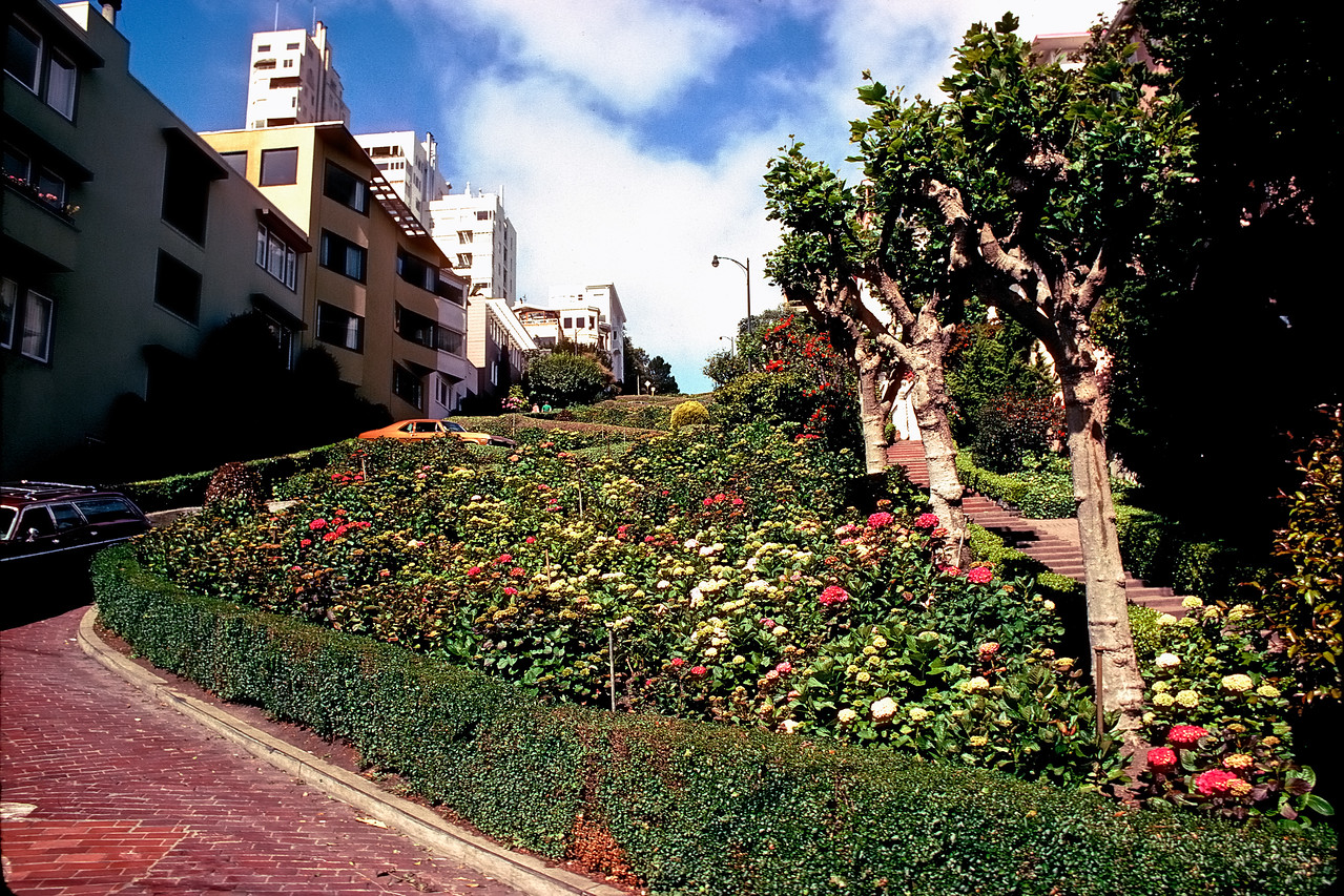 Lombard Street   San Francisco, California