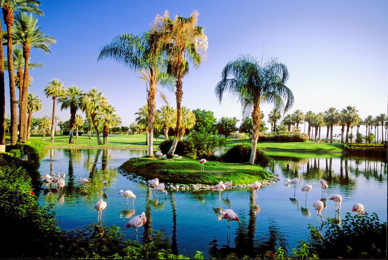 JW Marriott Resort   Palm Desert, California