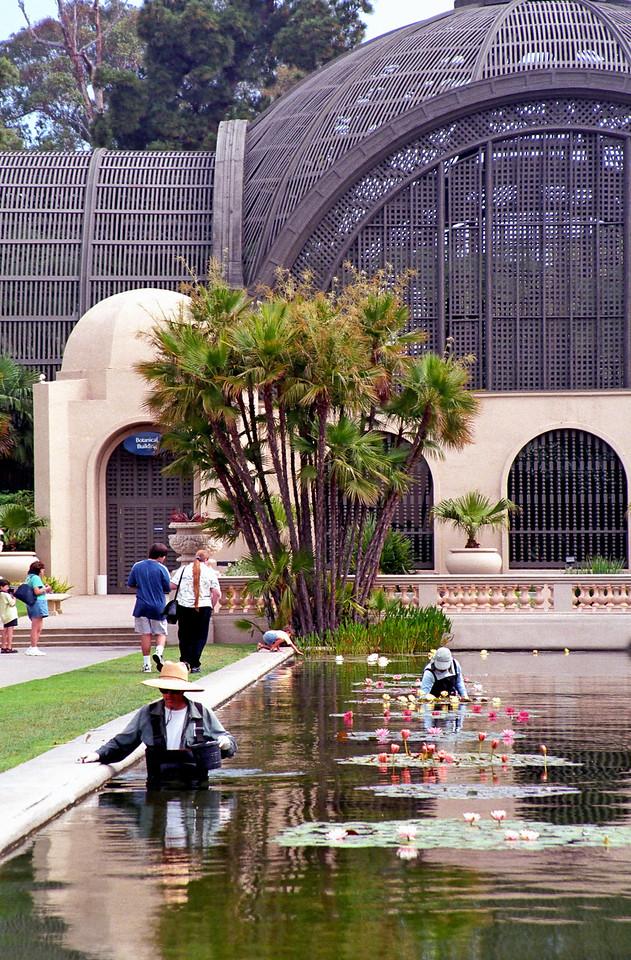 Arboretum   Balboa Park   San Diego, California