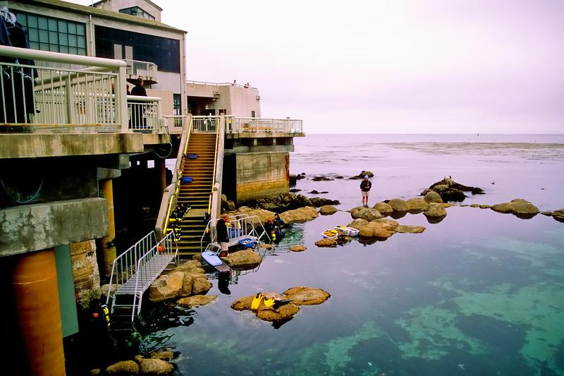 Monterey Aquarium   Monterey, California