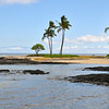 Life before Captain Cook  Makaiwa Bay   The Big Island, Hawaii