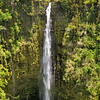 Akaka Falls   The Big Island, Hawaii