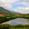 Menehune Pond   Kauai, Hawaii