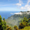 Na'Pali Coast Overlook   Kauai, Hawaii