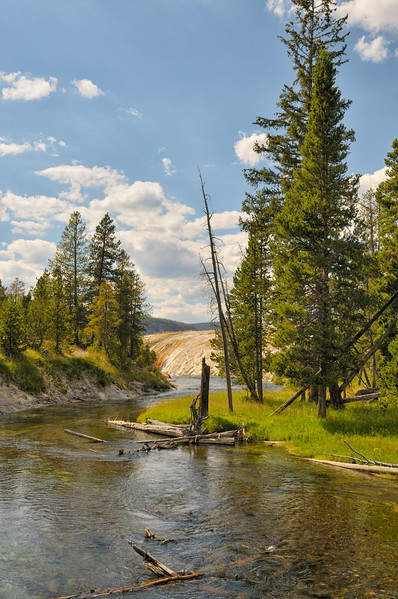 River scene  Yellowstone National Park, Wyoming