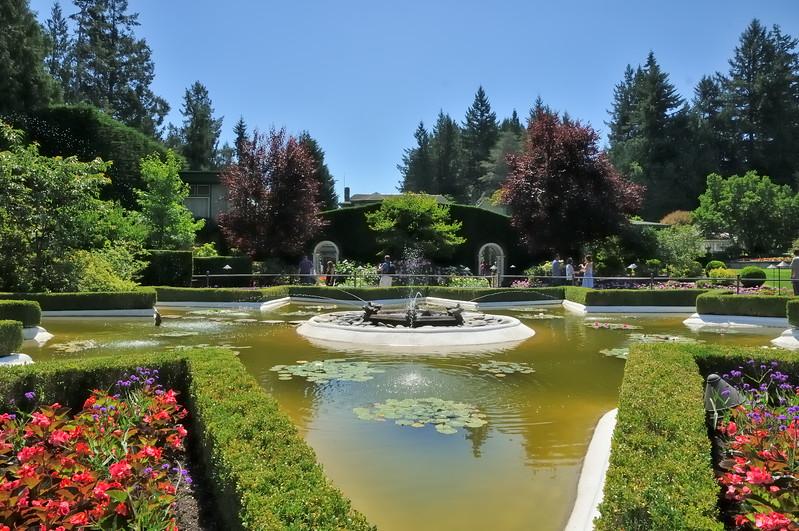 Star shaped fountain