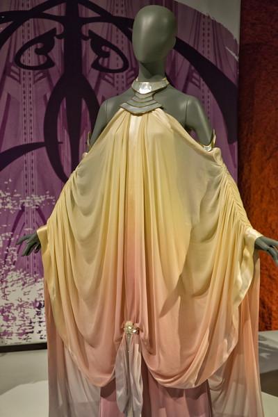 Padme Amidala Lake Retreat arrival gown