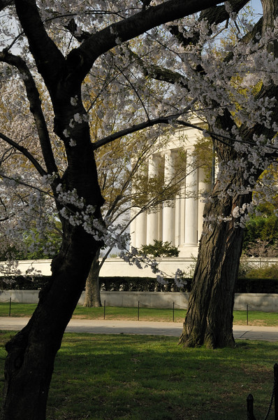 The Jefferson Memorial - Washington, DC