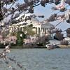 Tidal Basin and the Jefferson Memorial - Washington, DC