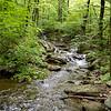 Mountain stream - Wintergreen, Virginia