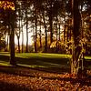Devil's Knob Golf Course - #1 hole -  Wintergreen, Virginia