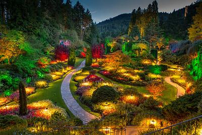 Butchers Gardens at night