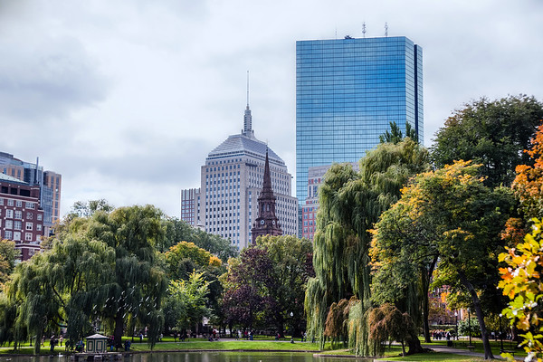View on buildings from Boston Common, a park in downtown Boston