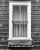 The School Window