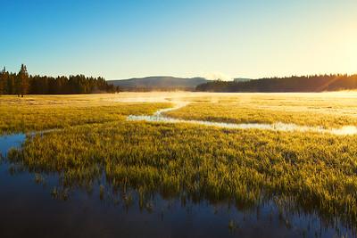 Yellowstone Gold