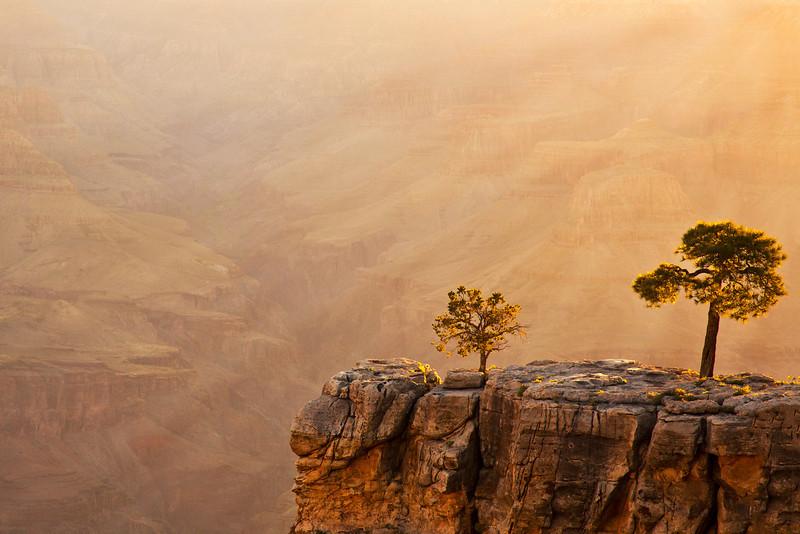 A Grand Dawn