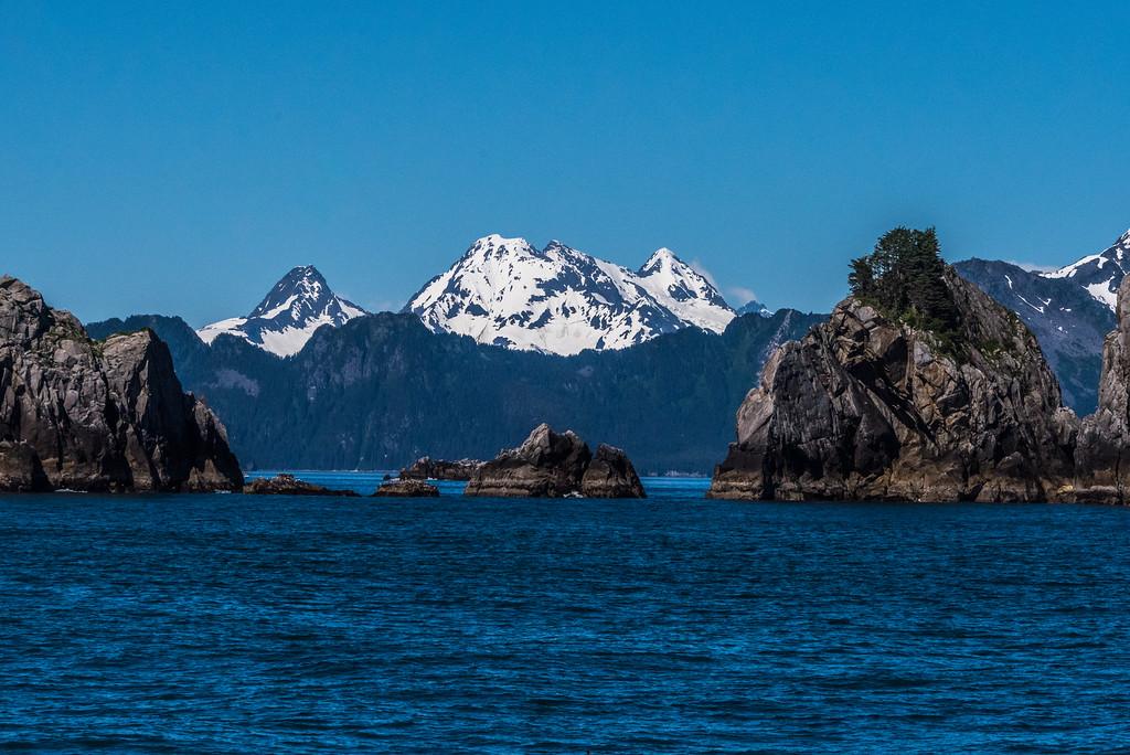 Kenai_Peninsula_Alaska_2016-67819