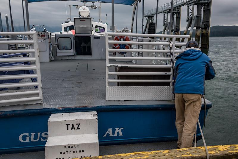 Gustavus AK, Whale Watching