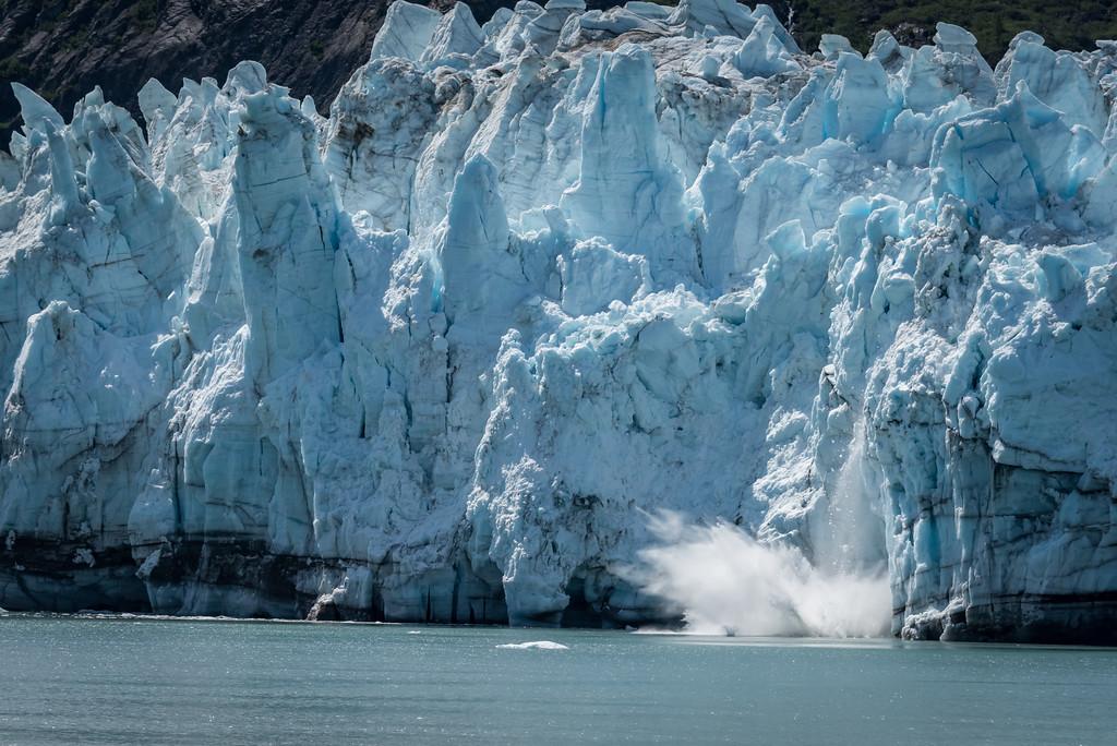 Glacier_Bay_Alaska_2016-60618