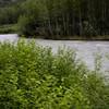 Skagway_Alaska_2016-62203