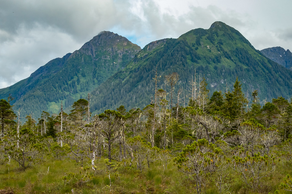 Sisters Mountains - Sitka