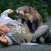 Steve Kroschel and Wolverine (Banff) - Kroschel Center for Orphaned Animals