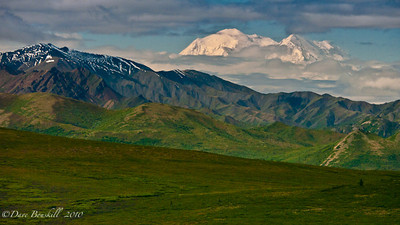 The Great Denali.