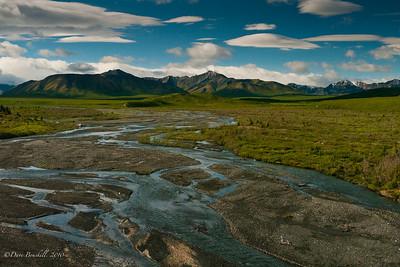 Denali National Park has a unique landscape