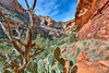 Colorful Fay Canyon